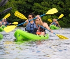 <h5>Kayaking Eco Tour</h5><p>Paddling through the marine sanctuary and mangrove lagoon, everyone learns from the very knowledgeable guides while doing something physical.																	</p>