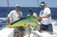 <h5>Take the Bait</h5><p>Deep sea sport fishing at its finest. We can almost guarantee you will catch fish in some of the world's best fishing waters.</p>
